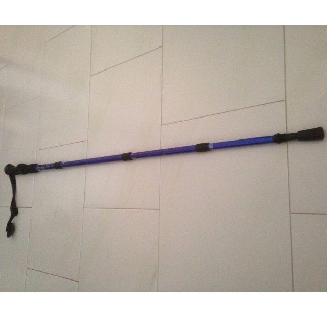 folding_adjustable_hiking__trekking__walking_stick_with_compass_blue_1453401248_15b8b4f7