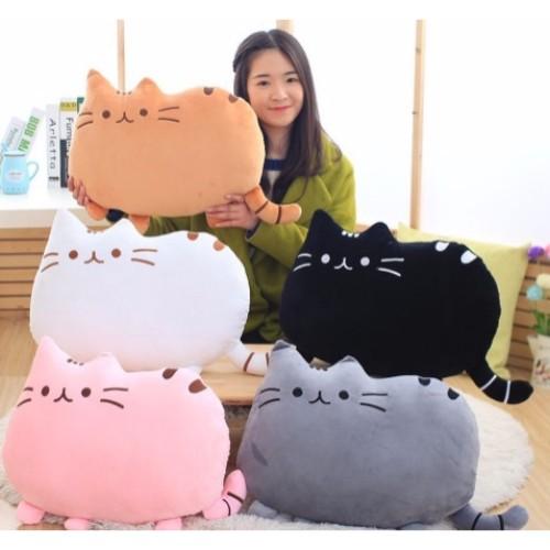 cat cushion2